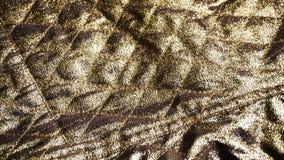 Naturligt guld- nylonpolyestertyg i textiler shoppar lager videofilmer
