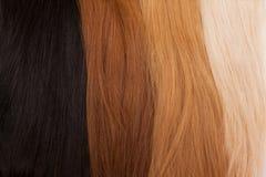 Naturligt hår för förlängningar Olika färger från svart till blondinen royaltyfri bild