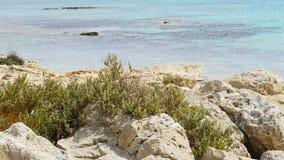 Naturligt havslandskap i Cypern arkivbilder