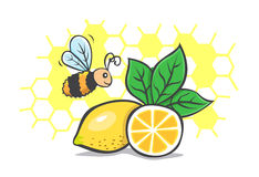 Naturligt honungcitronbi Stock Illustrationer