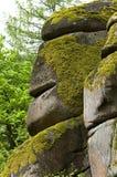Naturligt konstverk vaggar in bildande, svart skog royaltyfri foto