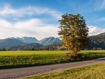 Naturligt landskap, Österrike Royaltyfria Bilder