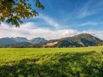 Naturligt landskap, Österrike Royaltyfria Foton