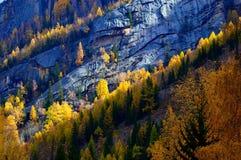 Naturligt landskap Royaltyfri Foto