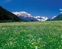 naturligt landskap Royaltyfria Bilder
