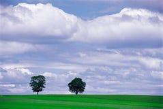 naturligt landskap Royaltyfri Bild