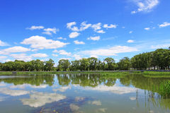 Naturligt landskap av porslinet arkivfoton