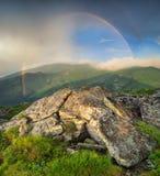 Naturligt landskap i sommartiden royaltyfri foto