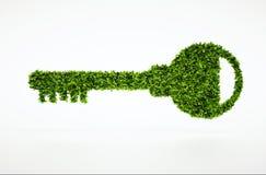 Naturligt nyckel- symbol för ekologi med vit bakgrund Royaltyfria Foton