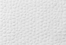 Naturligt pappers- texturerar Royaltyfri Bild
