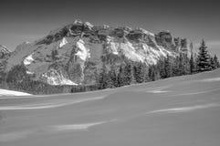 Naturligt parkera av Fanes - fjällängar, Dolomites Royaltyfri Fotografi