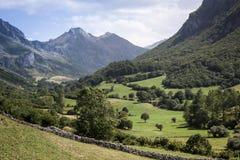 Naturligt parkera av Somiedo asturias spain royaltyfria foton