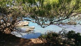 Naturligt parkera i Apulia, Italien Fotografering för Bildbyråer