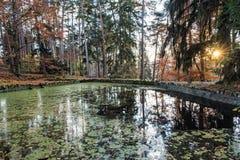 Naturligt parkera med sjön och träd i Topolcianky, Slovakien fotografering för bildbyråer