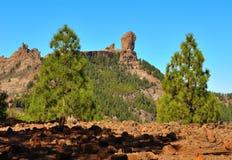 Naturligt parkera Roque Nublo, Gran canaria, kanariefågelöar Royaltyfri Foto