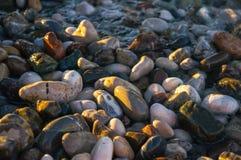 Naturligt rundat grus på havskusten Royaltyfri Fotografi