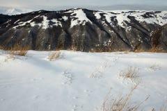 Naturligt snöig landskap i Abruzzo, Italien Arkivbilder
