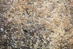 Naturligt stena väggbakgrundsdagen royaltyfri fotografi