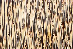 naturligt texturträ för abstrakt bakgrund Arkivbild