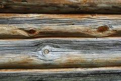 naturligt texturträ för korn Royaltyfria Bilder