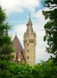 naturligt torn för ram Royaltyfria Foton