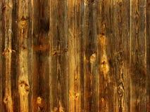 naturligt trä för bakgrund Arkivfoton