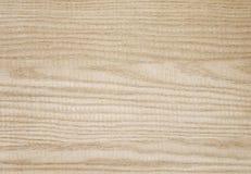 Naturligt trä för vit aska - materielbild Arkivbilder