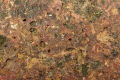 Naturligt vagga sandstengolvbakgrund Arkivfoto