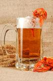 naturmort пива Стоковая Фотография RF