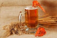 Naturmort della birra Immagini Stock Libere da Diritti