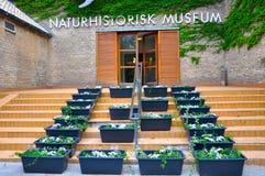 Naturmuseum Royaltyfri Fotografi