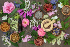 Naturopathic Flowers and Herbs Royalty Free Stock Images
