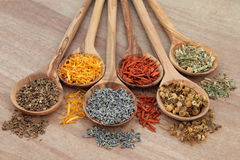 Naturopathic Herbs Royalty Free Stock Image