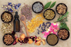 Naturopathic Medicine. Herbal naturopathic medicine selection also used in pagan witches magical potions over old paper background Royalty Free Stock Photos