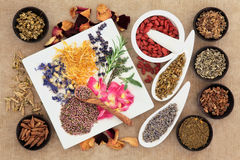 Naturopathic Medicine Royalty Free Stock Image