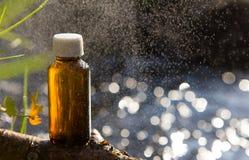 Naturopathy - ätherische Öle und medizinische Kräuter stockfotos