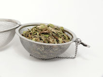 Naturopathy, dried birch leaves Royalty Free Stock Photos