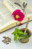 Naturopathy with herbs Stock Photography