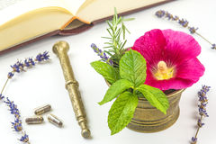 Naturopathy with herbs Royalty Free Stock Image