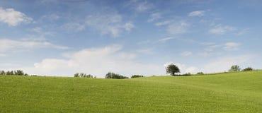 Naturpanorama mit hellblauem bewölktem Himmel Stockbilder