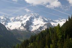 Naturpark Adamello Brenta Stockbilder
