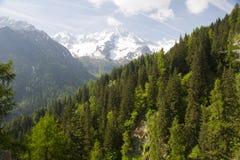 Naturpark Adamello Brenta Stockbild