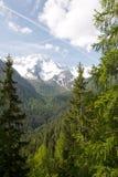 Naturpark Adamello Brenta Lizenzfreie Stockbilder
