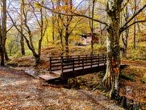 Naturpark Grza nahe dem Paracin, Serbien stockfoto