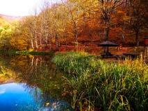 Naturpark Grza nahe dem Paracin, Serbien stockfotografie