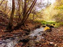Naturpark Grza nahe dem Paracin, Serbien lizenzfreies stockfoto