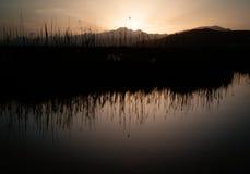 Naturpark s'Albufera auf Mallorca-Insel Lizenzfreie Stockfotos