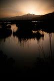 Naturpark s'Albufera auf Mallorca-Insel lizenzfreie stockfotografie