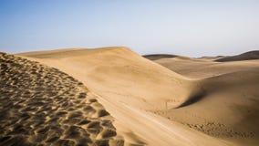 Naturpark und Dünen von Maspalomas, Insel Gran Canaria, Spanien stockbilder