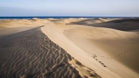 Naturpark und Dünen von Maspalomas, Insel Gran Canaria, Spanien lizenzfreie stockbilder